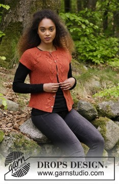 Autumn Vines Top by DROPS Design